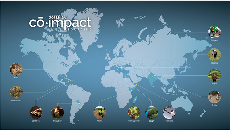 dT_co-impact-sourcing